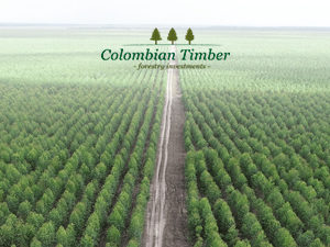 Colombian Timber's 2018 investment round